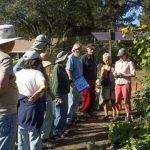 Community Seed Exchange gardening class