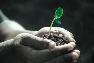 soil class