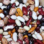 gardening class heirloom beans