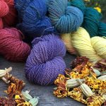 Natural Dyeing class